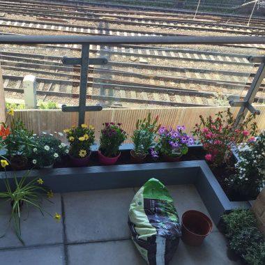 Flowerbed build (Shoreditch)